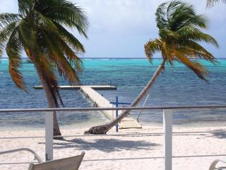 Sir Turtle Beach Villas - Ocean Front Villas - 8 b - Little Cayman vacation rentals