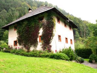 Charming house Bukovje in Srednji vrh - Gozd Martuljek vacation rentals