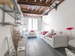 Il Chicco di Pietrasanta - Pietrasanta vacation rentals