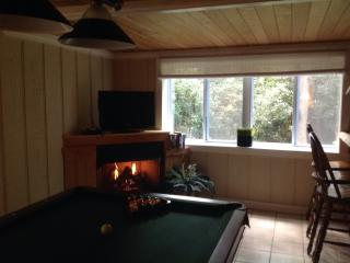 """""""The Pinecone""""....Charming cottage with pool table - Maggie Valley vacation rentals"""