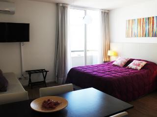 (DF602) Beautiful Studio in San Telmo, Juan de Garay ave. and Defensa st. - Capital Federal District vacation rentals