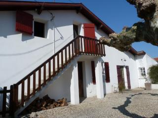 Nice Condo with Internet Access and Television - Tarnos vacation rentals