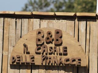 Affittacamere B&B Il Casale delle Pianacce - Castiglione Di Garfagnana vacation rentals