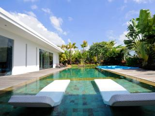 Amazing Luxury villa, 14 m Pool, Rice field view - Bali vacation rentals