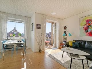 Great Copenhagen apartment with sunny balcony at Amager - Copenhagen vacation rentals