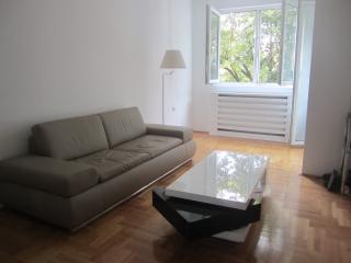 Luxury Apartment with River View -  Nis, Serbia - Nis vacation rentals