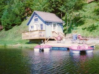 **Beautiful Cozy Cottage on Lake Eden** - Eden Mills vacation rentals