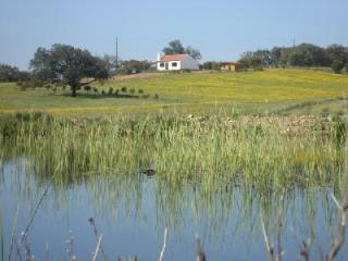 Self Catering in Cercal - 60074 - Cercal do Alentejo vacation rentals