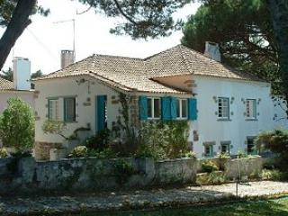 Self Catering in Colares - 50212 - Colares vacation rentals