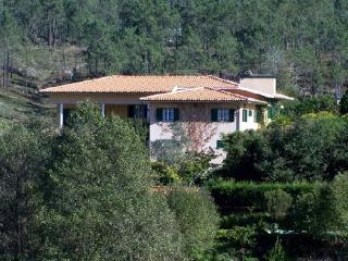 Self Catering in Paredes - 90149 - Northern Portugal vacation rentals