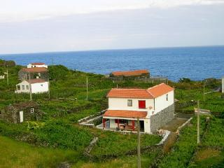 Self Catering in Pico Island - 80120 - Beiras vacation rentals
