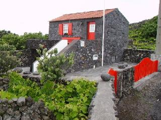 Self Catering in Pico Island - 80121 - Piedade vacation rentals