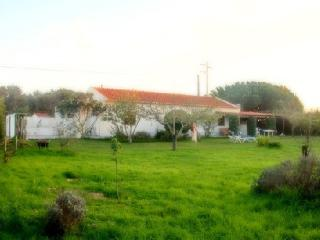 Self Catering in Brejão - 60085 - Odeceixe vacation rentals