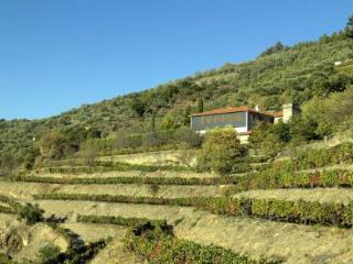 Self Catering in Pinhão - 90174 - Pinhao vacation rentals