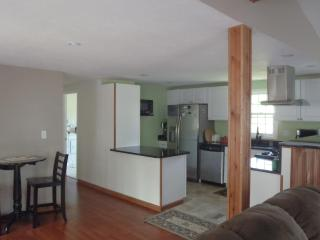 3 bedroom House with Internet Access in Traverse City - Traverse City vacation rentals