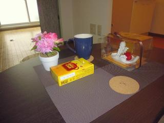 Cozy full apartment(1LDK) for 2 ~3+ free internet! - Sapporo vacation rentals