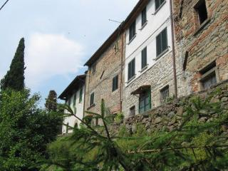 Pescia - 86410001 - Pescia vacation rentals