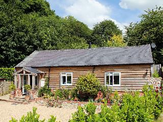 Perfect Cottage with Internet Access and Satellite Or Cable TV - West Meon vacation rentals