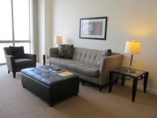Lux 1 BR Apt at Reston Town Center - Reston vacation rentals