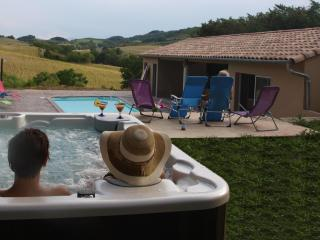 Spacious 4 bedroom Mirepoix Bed and Breakfast with Internet Access - Mirepoix vacation rentals