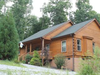 New Log Cabin, Views, Gas Logs, Hiking, River Two Minutes. Little Switzerland Nc - Nebo vacation rentals