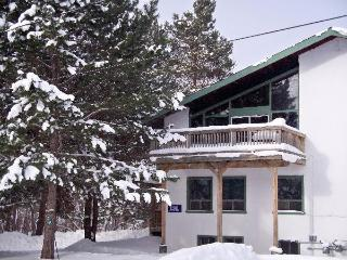 8 Bedroom Swiss Chalet with Sauna 13R#199 - Blue Mountains vacation rentals