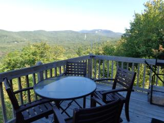 Beautiful Condo with Mountain View Near Ski Areas - Campton vacation rentals