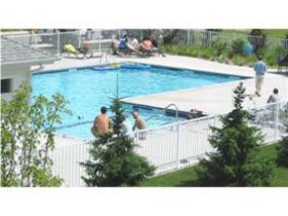 In-town Condo, Saugatuck Harbor View, Pool and Spa - Southwest Michigan vacation rentals