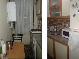 Newly Built,Reasonable Budget,Near Ataturk Airport ! - Istanbul vacation rentals