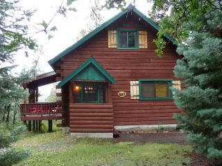 Alpine Haven Log Cabin, Pretty Views, Ski, Hot Tub - Southwest Colorado vacation rentals