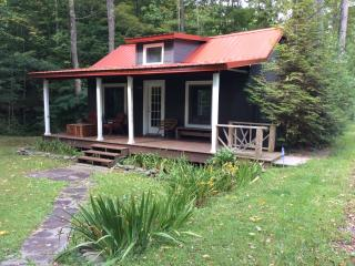 Charming Streamside Cabin...min To Belleayre Ski - Pine Hill vacation rentals