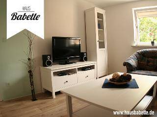 Nice Condo with Television and Central Heating - Zirndorf vacation rentals