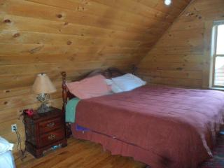 Secluded Log Cabin yet still close to town - Lake Placid vacation rentals