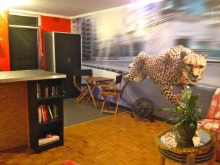 The Cheetah Cave - close to Perth CBD - Perth vacation rentals