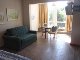 Marom carmel center Apartmentsׂ (Mpriya Ave.29) - Haifa vacation rentals