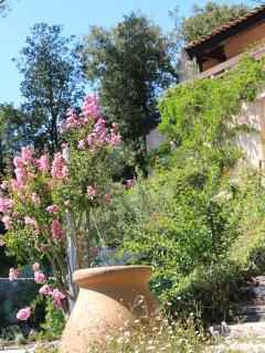 Nice B&B with Internet Access and Garden - Roquefort les Pins vacation rentals