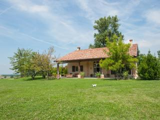 B&B in luxury Villa in the country of Piacenza - Piacenza vacation rentals