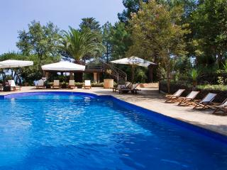 VILLA AZIZ: Luxury,  pool, park, tennis, breakfast included - Piedimonte Etneo vacation rentals