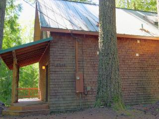 Dog-friendly recently remodeled riverfront home with firepit - Rhododendron vacation rentals