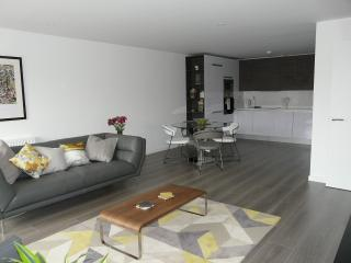 The Marque Apartment  - Cambridge 1m city centre - Cambridge vacation rentals