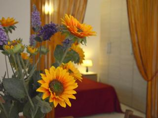 Large and Comfortable Studio two steps from center - Florence vacation rentals