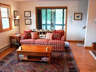 PINE HILL 37-2 - Adirondacks vacation rentals