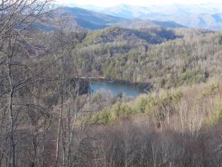 Comfortable Cabin with Deck and Internet Access - Cullowhee vacation rentals