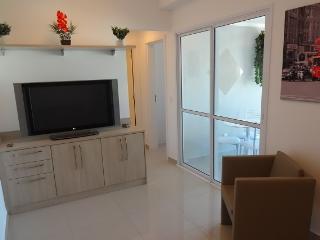 Gorgeous 1 bedroom Sao Paulo Apartment with Balcony - Sao Paulo vacation rentals