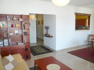 Cozy Condo with Internet Access and A/C - Jounieh vacation rentals