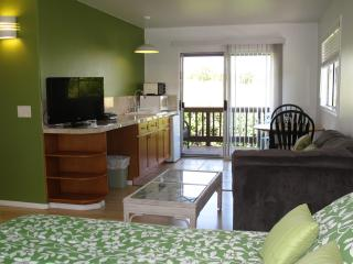 Legal North Shore Studio Apartment - Haiku vacation rentals