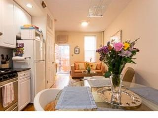 Classic LOVELY TERRACE ***+ - Image 1 - New York City - rentals