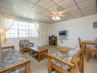 2BR/2BA Stunning Gulf Coast View Condo, Sleeps 6! Winter Texans Welcome! - Port Aransas vacation rentals