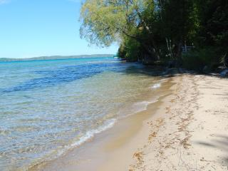 Torch Lake Exceptional Lakefront Cottage - South Boardman vacation rentals
