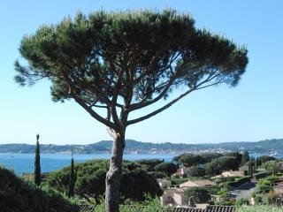 Bastide - Vue mer - Prestations haut de gamme - Saint-Maxime vacation rentals